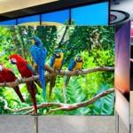 LG-55-Inch-OLED-TV