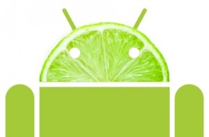 android key lime pie